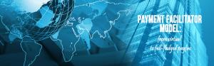 Virtual Payment Facilitator Model